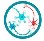 Лого атрофация нейронов